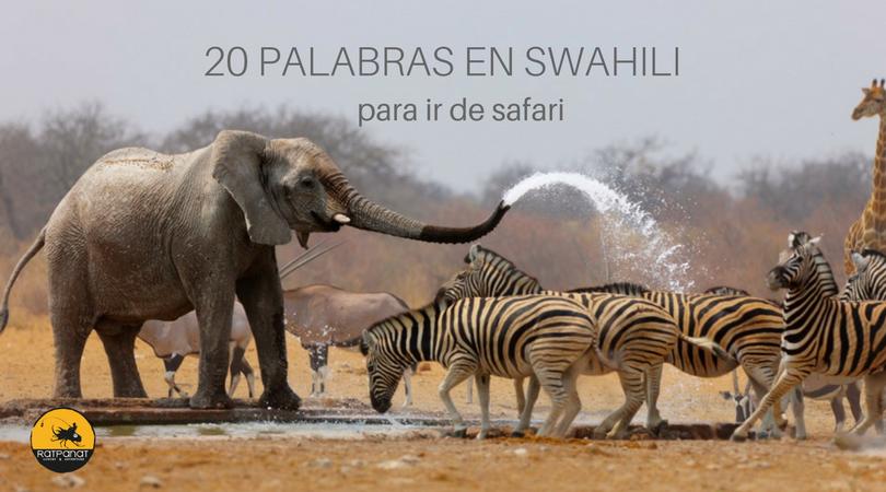 20 palabras en swahili para ir de safari-ratpanat