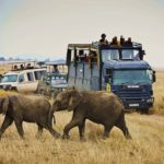 camion ratpanat africa oriental